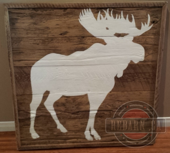 White-Moose-On-Barn-Board